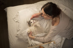 Girl wakes cat in the morning Royalty Free Stock Images