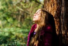 Girl walk in botanical garden. Enjoying nature. Peaceful environment garden. Kid cute fancy child spend time in park. Explore garden. Excursion to botanical royalty free stock image