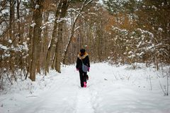 Girl walk with dog through forest in a winter stock image