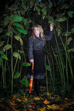 Girl walk in enchanted forest Royalty Free Stock Images
