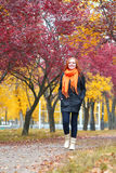 Girl walk on pathway in city park with red trees, fall season Royalty Free Stock Photos