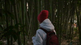 Girl walk thru bamboo thickets stock video footage