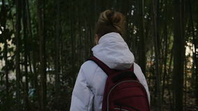 Girl walk thru bamboo thickets stock video