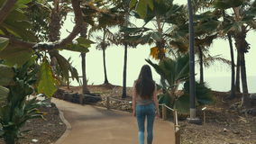 Girl walking along city palm park, near atlantic ocean. Girl walking along city palm park stock video footage