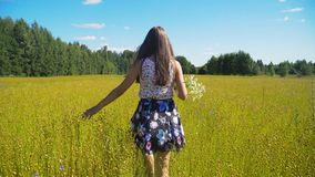 Summer landscape, girl, field of flax Royalty Free Stock Photo