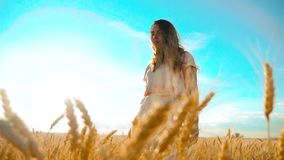 Girl is walking along the wheat field nature slow motion video. Beautiful girl in white dress running nature freedom. Happiness hands lifestyle to the side on stock video