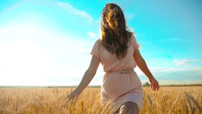 Girl is walking along the wheat field nature slow motion video. Beautiful girl in white dress running nature freedom. Happiness lifestyle hands to the side on stock footage