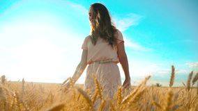 Girl is walking along the wheat field nature slow motion video. Beautiful girl in white dress running nature freedom. Happiness hands lifestyle to side on field stock footage