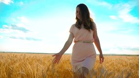 Girl is walking along the wheat field nature slow motion video. Beautiful girl in white dress running nature freedom. Happiness hands to the side on field stock footage
