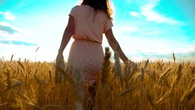 Girl is walking along the wheat field nature slow motion video. Beautiful girl in white dress running nature freedom. Happiness hands to the side on field at stock video