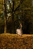 A girl is walking in an autumn forest Stock Image