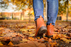Girl walking on autumn leaves Royalty Free Stock Images