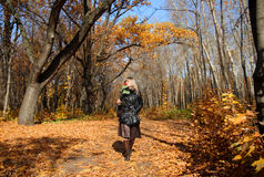 Girl walking in autumn park alley Royalty Free Stock Image