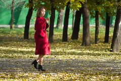 Girl walking autumn park Royalty Free Stock Image