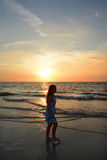 Girl walking on the beautiful beach at sunset Royalty Free Stock Photography