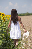 Girl walking in a cropland. Near a sunflower field royalty free stock photo
