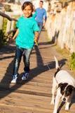 Girl walking dog Royalty Free Stock Photos
