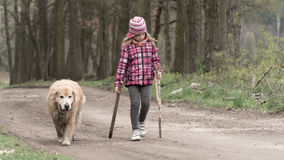 Girl walking with a dog Stock Photography