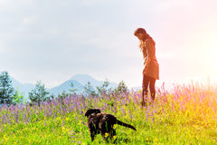 Girl walking with the dog in the  meadows Royalty Free Stock Photos