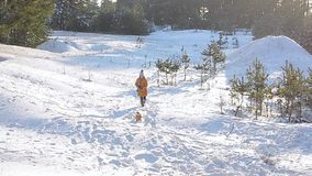 Girl walking with a dog in a snowy winter park on a background of snow-covered trees, sunny frosty day. Girl walking with a dog in a snowy winter park on a stock video footage