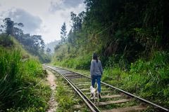 Girl walking with dog on train way. Adventure travel stock photo