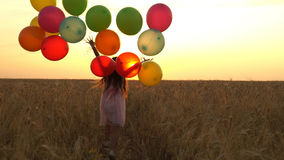 Girl walking in a field with balloons Stock Photography