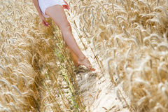 Girl walking on the field Royalty Free Stock Photo