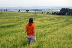 Girl walking in field overlooking forest and valley stock image