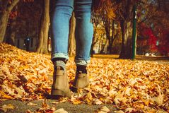 A girl walking in foliage in fall season royalty free stock images