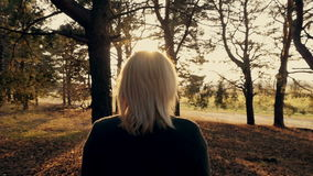 Girl Walking in the Forest. Blond girl walking in the forest at sunset stock video footage
