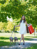 Girl  walking with greyhounds Stock Photo
