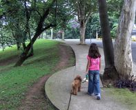 Girl walking her dog. Girl takes her dog for a walk in the park Royalty Free Stock Images