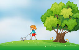 A girl walking with her dog at the hilltop Stock Photo