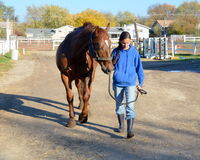 Girl walking with horse on farm. A teen girl is walking her horse back to the barn Royalty Free Stock Photos