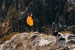 Girl walking on the mountain with a dog royalty free stock image