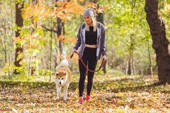 Girl walking in park with her dog. Woman walking in park with her dog Royalty Free Stock Photo