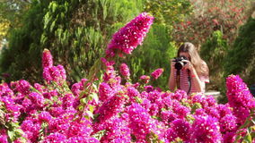 Girl walking in the park and take pictures stock video footage
