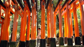 Girl walking in Red gate torii at temple shrine in Kyoto, Japan stock footage