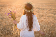 Girl walking with sheaf on wheat field at sunset. Beautiful young girl walking with sheaf on ripe wheat field at sunset Royalty Free Stock Photos