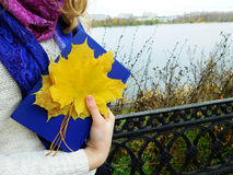A girl walking on a shore holding a book. And a bunch of maple leaves on an autumn day royalty free stock image