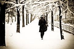 Girl walking in snow. Girl taking a walk on a snowy and freezing day Stock Images