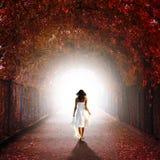 Girl walking towards the light royalty free stock image