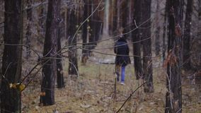 The girl is walking among the trees in the autumn forest. cinematic shot, slow motion. walk in the fresh air, healthy. Lifestyle. late autumn, the first snow stock footage
