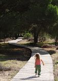 Girl walking up path. Little blonde girl walking away down a forest path in the afternoon sun royalty free stock images