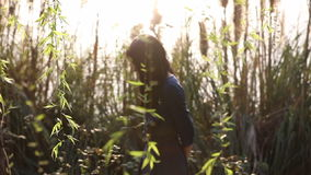 Girl walks across field of reeds and willow trees at dust stock footage