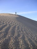A girl walks on Death Valley sand dune Stock Photography