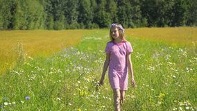 Girl walking on the field. Royalty Free Stock Photos