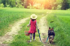 Free Girl Walks With A Dog On A Rural Road Royalty Free Stock Images - 123320049