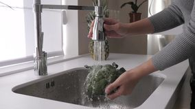 Girl washes broccoli in the kitchen sink stock video footage