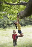 Girl Watching Friend Hanging From Tree Stock Photography